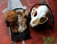 Bobcat fur and leather pouch - taxidermy inspired art by Lupa. Available at https://www.etsy.com/listing/219143808/black-recycled-leather-pouch-with-real