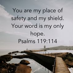 Psalms You are my place of safety and my shield. Your word is my only hope. Scripture Verses, Bible Verses Quotes, Bible Scriptures, Faith Quotes, Psalms Verses, Faith Prayer, Faith In God, Christian Life, Christian Quotes