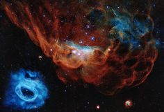 The giant red nebula NGC 2014 and its smaller blue neighbor NGC 2020 part of the Large Magellanic Cloud in the Milky Way about 163000 light years away - latest image Hubble Space Telescope (NASA) James Webb Space Telescope, Hubble Space Telescope, Nasa Space, Telescope Images, Astronomy Pictures, Hubble Pictures, Undersea World, Hubble Images, Star Cluster