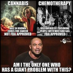 The only reason pot is illegal is because big pharma can't make money from it.