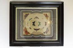 Antiguas calcomanías de mariposas, el desván de bartleby, marcos antiguos, años 20