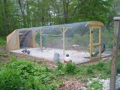 The ideal method is to construct a coop. Within this article, you will discover what things to look for when building a chicken coop or purchasing a pre-made chicken house. Backyard Chicken Coops, Chicken Coop Plans, Building A Chicken Coop, Chickens Backyard, Chicken Coop Designs, Raising Quail, Raising Chickens, Chicken Pen, Bird Aviary