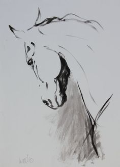 Equine horse LE print from a sketch by Heather Irvine $38.50