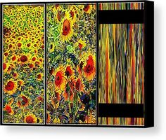 Sunflower Triptych by Dorothy Berry-Lound. A wonderful image of a field of sunflowers. The left panel shows the sunflowers in the field, the middle panel slightly distorts and enlarges a section of the image. The third panel takes the colours from the original image and creates a modern abstract.