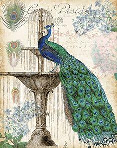 RB9347TS <br> Vintage Peacocks II <br> 11x14