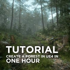 In this tutorial I go over how you can create a realistic forest environment with Unreal Engine 4 and Megascans. Learn about basic layout, composition, detailing, lighting and post-processing in this 1 hour tutorial. For more on Megascans: Unreal Engine 4 Tutorial, Adele, Yin Yang, Realistic Games, Video Game Development, Game Environment, Animation Tutorial, Game Engine, 3d Tutorial