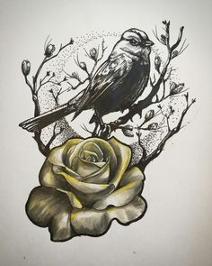 Rose and sparrow tattoo design More