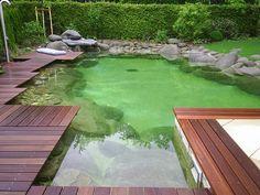 Cool backyard pond design ideas 16 dream pools, swimming pool pond, n Swimming Pool Pond, Natural Swimming Ponds, Natural Pond, Swimming Pool Designs, Outdoor Ponds, Ponds Backyard, Modern Pond, Modern Backyard, Fish Pond Gardens