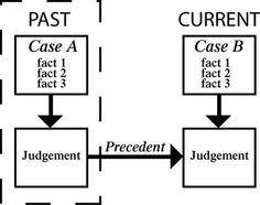 Curtis Chapter 16 Precedent Synonym