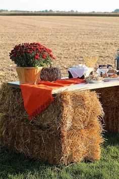 To Throw The Best Fall Harvest Party On Your Homestead Check out How To Throw The Best Fall Harvest Festival On Your Homestead at .Check out How To Throw The Best Fall Harvest Festival On Your Homestead at . Fall Bonfire Party, Fall Harvest Party, Backyard Bonfire Party, Bonfire Ideas, Autumn Harvest, Harvest Time, Backyard Bbq, Outdoor Fall Parties, Barn Parties