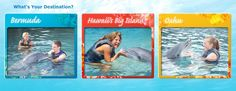 Sun, beaches, dolphins! A dolphin excursion is just what I need during Christmas.   #Aqua12staysofchristmas