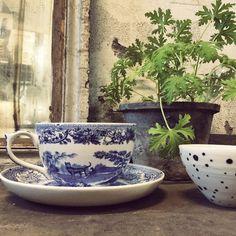 Spode China Teacup and Saucer