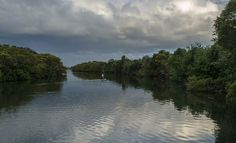 Tweed River near Chinderah.  Here is another secret place for our www.greencoastphototours.com