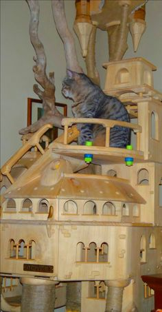 DomusfeliS - Very complex structure for cats #luxurycatcastle #cattower #specialplayzoneforcats #cattoy #catenclosure #catfrendlyhouse #petdesign #amazingcatscratching #catscratchforniture #cathouse