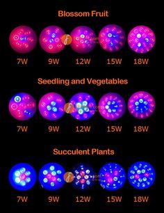LED Grow Light for Blossom Fruit,Seedling and Vegetables, Succulent Plants