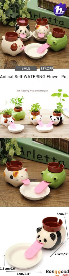 33%OFF. US$5.99 + Free shipping.  Animal Self-watering Flower Pot. 4 patterns available. It is made of glazed ceramic, and come complete with everything needed to grow. Such a fun and amusing gift! Only at banggood.com