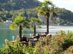 Peninsula Maria Loretto at lake Wörthersee. Klagenfurt, Places, Summer, Beautiful, Summer Time, Verano, Lugares