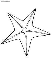 simple starfish coloring pages Google Search Under the Sea