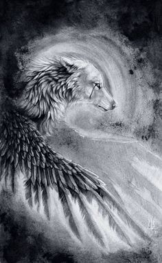 Art by wolf-minori on deviantart Raven And Wolf, Wolf Love, Fantasy Wolf, Fantasy Art, Fantasy Creatures, Mythical Creatures, Image Swag, Wolf Wallpaper, Wolf Pictures