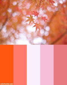 Pink Autumn Color Scheme