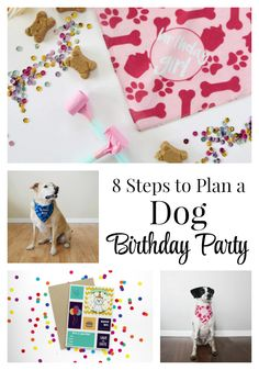 8 Steps to Plan a Dog Birthday Party - Find out how to throw your dog a birthday party that your guests will never forget! BONUS: grab these FREE printable birthday party invites! Dog First Birthday, Puppy Birthday Parties, Puppy Party, Animal Birthday, Birthday Party Themes, Birthday Celebration, Dog Parties, Birthday Kids, Themed Parties