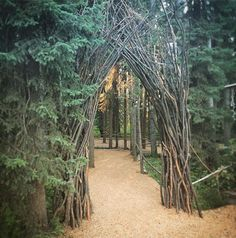 Break on through  To the other side  Archway by Alia at @frogfestalberta Natural Beauty from BEAUT.E