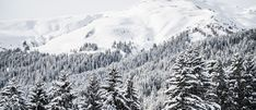 Impressions at the Annual Meeting 2018 of the World Economic Forum in Davos, January by World Economic Forum / Mattias Nutt Davos, Annual Meeting, World Economic Forum, The Past, January 20, Matisse, Outdoor, Seasons, Twitter