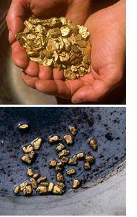 Canadian Gold Prospectors Forum - Gold Prospectors Forum