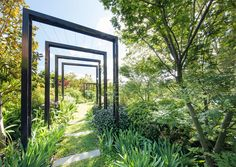 We drop by a striking Melbourne garden designed by Taylor Cullity Lethlean. Words by Georgina Reid. Images by John Gollings and supplied by T.