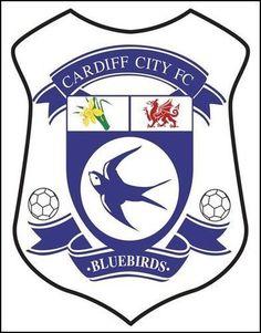 Cardiff City Cardiff City Football, Cardiff City Fc, Football Shirts, Football Team, British Football, Shirt Cake, Wales Uk, Blue Bird, Fifa