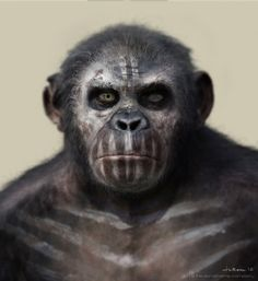 'Dawn of the Planet of the Apes' Concept Art by The Aaron Sims Company