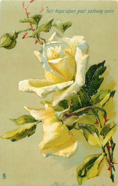 FAIR HOPE UPON YOUR PATHWAY SMILE  two cream/yellow roses