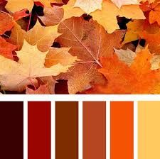 Image result for fall colour palette