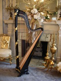 My dream instrument