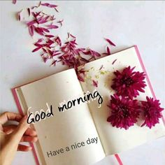 Morning Pictures, Good Morning Images, Good Morning Quotes, Good Night Image, Good Morning Good Night, Good Day, Good Morning Greeting Cards, Good Morning Greetings, Good Morning Gif Animation
