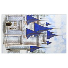 Prince Castle Photo Booth Photo Backdrop Fabric
