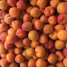 Colorful Fruit, Peach Fruit, Orange Aesthetic, Just Peachy, Nom Nom, Healthy Lifestyle, Food, Peaches, Summer