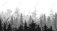 forest illustration black and white - Google Search