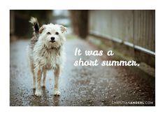 it was a short summer.