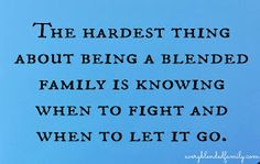 A Very Blended Family: When two families ideals don't match