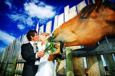 """Just Married Photography company  """"JMP"""""""