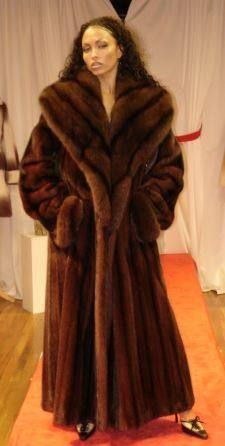 Brown saga mink long trench fur coat hood belt class sable ...