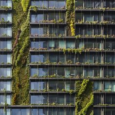One Central Park / Jean Nouvel + Patrick Blanc Green Architecture, Amazing Architecture, Green Facade, Destinations, Jean Nouvel, Modern Garden Design, Built Environment, Urban Farming, Green Building