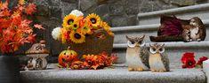 Dekoeule, beige-braun Wreaths, Culture, Fall, Painting, Home Decor, Get Tan, Autumn, Decoration Home, Door Wreaths