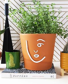 This minimal clay pot craft is easy to make. Use polymer clay to make a face then glue the clay to a terra-cotta pot. Its the perfect craft to relax with! Clay Pot Crafts, Diy Clay, Diy And Crafts, Face Planters, Planter Pots, Shake, Modern Ceramics, Terracotta Pots, Clay Pots