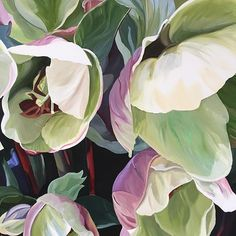 Hellebore season is almost done. Till next year. 120 x 90cm