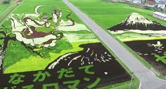 Tiny town in northern Japan creates gorgeous, gigantic artwork out of rice paddies