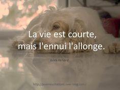 """Jules Renard """"La vie est courte, mais l'ennui l'allonge."""" Jules Renard"""