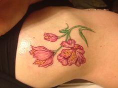 Alstroemeria Tattoo