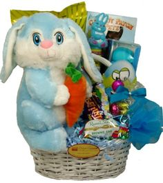 Delight Expressions™ Easter Bunny Sweets and Treats Gift Basket - A Easter Gift for Boys
